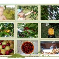 Один из  дней Алёшки в гостях у бабушки и дедушки на Кубани.