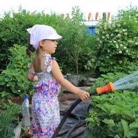 Буду маме помогать клубнику поливать!