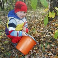 Раз, два, три, четыре, пять,  дедушка нас в лес вывел,грибной УРОЖАЙ собирать!!!