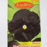 Чёрные красавицы сада