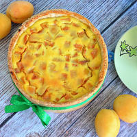 Песочно-творожный пирог с абрикосами - в нем идеально все