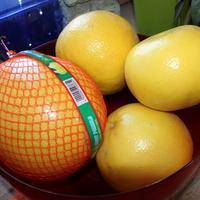 Помело и грейпфрут - близнецы или братья?
