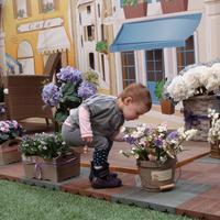Открылась выставка «Дом и сад. Moscow Garden Show»