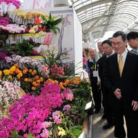 С 8 по 17 марта в Тайване пройдет выставка Taiwan International Orchid Show 2014