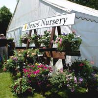 Открылась садоводческая ярмарка «Suffolk Garden Show» в Великобритании