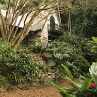 Сад в стиле натюрель посреди леса