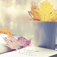 Здравствуй, первый день Осени!