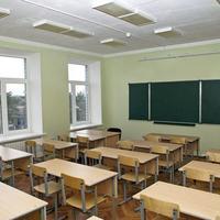 Нужен совет учителям - какие комнатные растения можно выращивать в кабинете с окнами на север?