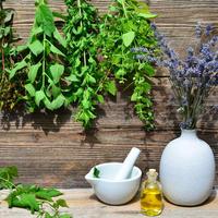 Поделитесь, какие растения вы заготавливаете и для чего?