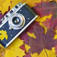 Поздравляем победителей осеннего этапа фотоконкурса!