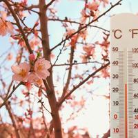 Гидрометцентр 7 дач осторожно уточняет - весна ко всем уже пришла? Прием!