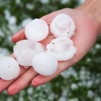 Гидрометцентр 7 дач спрашивает: удобно ли вообще спрашивать о погоде этим летом?