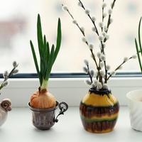 Выходные на 7дач. Как зазвать весну в дом?