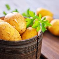 А если посадить картофель сейчас, в середине июня? Давайте обсудим позднюю посадку картофеля!