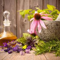 7 простых и доступных растений, которые избавят от зимних простуд