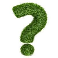 Надо ли сейчас обрезать зеленые листья цветов, которые перезимовали, т.е. остались с прошлого года?