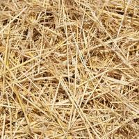 Посоветуйте, как можно использовать солому с древесной стружкой из подстилки курятника?