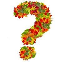 Помогите понять, как помочь земле и растениям, чтобы радоваться урожаям?