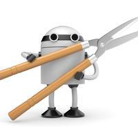 Роботы для дачи: настоящее и будущее
