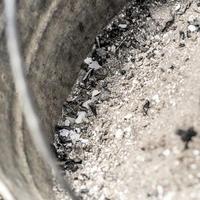 Зола для вашей почвы