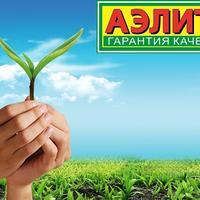 Отзывы о посадочном материале производителя Аэлита