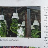 """Поделитесь опытом посадки растений """"вверх дном"""""""