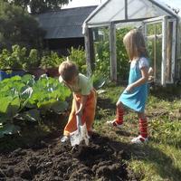 Мы копаем огород