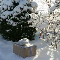Зимняя прогулка за призом EnjoyMe
