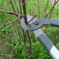 """Подарок от """"Гардены"""" - cучкорез Classic 610 В для обрезки молодой древесины"""