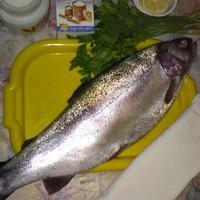 Красная рыба: мало поймать, нужно приготовить!