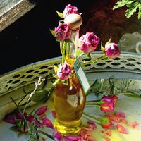 В целебном эфире: рецепты ароматических масел