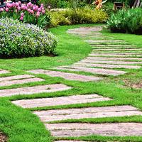 Практично или красиво? Варианты оформления садовых дорожек
