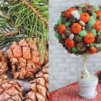 Новогодний топиарий с шишками и мандаринами: мастер-класс