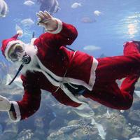 12 необычных новогодних и рождественских традиций