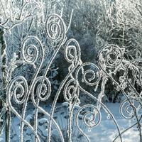 По канонам сезона: оформляем сад зимой