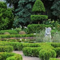 Снимаем садовый пейзаж: секреты удачных фотографий