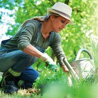 Бойцы невидимого фронта: биопрепараты для сада и огорода