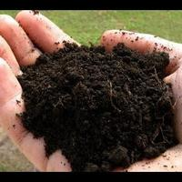 Как использовать торф в садоводстве? Виды грунтов