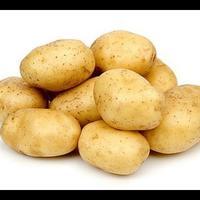 Сорта картофеля. Как выбрать лучший?