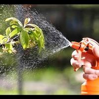 Лучшие препараты для защиты растений!