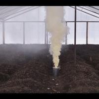 Как обеззаразить теплицу на зиму от насекомых?