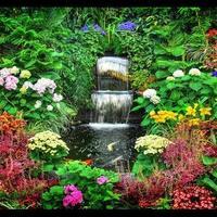 Необыкновенный цветочный сад