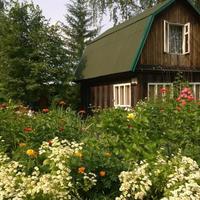 Сибирское лето