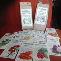 Как выращивать сахарную кукурузу?