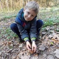 Наши первые весенние грибочки
