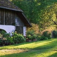 Естественный отбор: подворье в Нижней Баварии