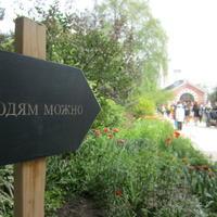 Цветочный фестиваль в Аптекарском саду
