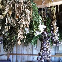 Как вам удаётся сохранить аромат пряных трав до весны или урожая следующего года?