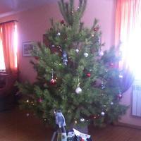 Праздник всё ближе, а подарков всё больше! Вот и жители Урала получили призы фирмы Gardena!