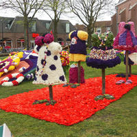 Фестиваль цветочных панно и мозаик в Голландии
